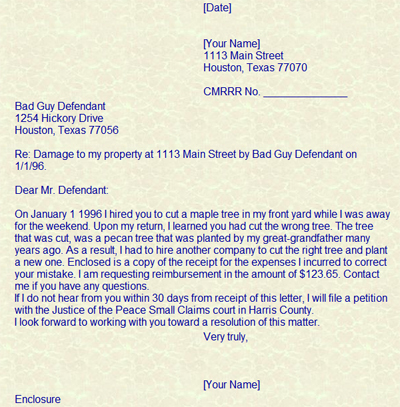 Sample Small Claims Letter